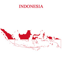 indonesia-fibre-report-2015