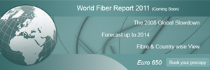 World Fiber Report